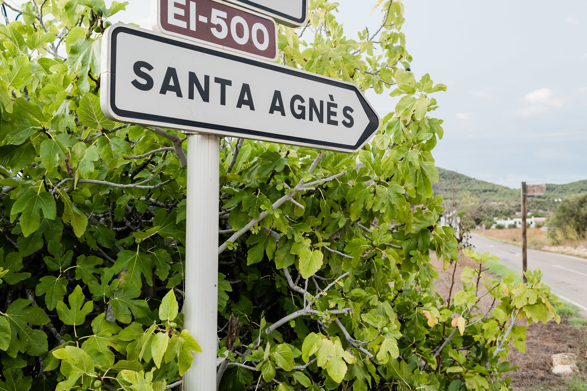 Postcards from Ibiza: Santa Inés